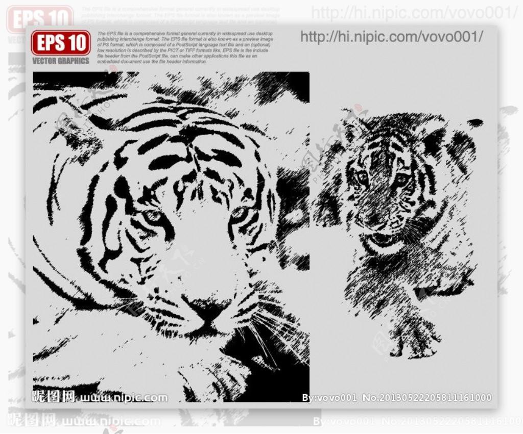 老虎矢量剪影图片